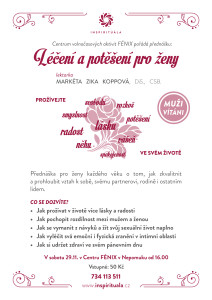 prednaska_fenix_2911-2014